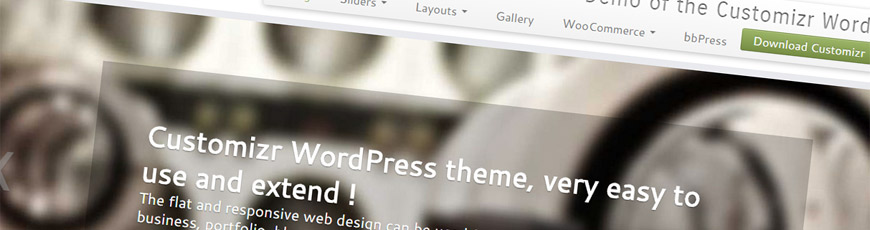 theme customizr wordpress